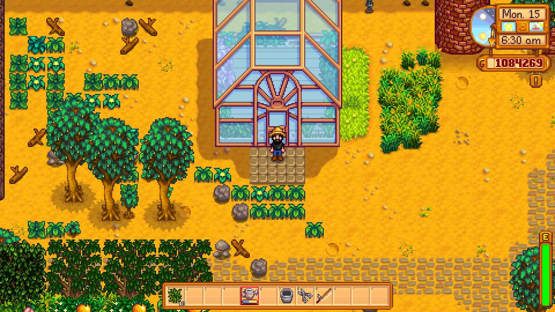 Stardew Valley How To Unlock The Greenhouse Exputer Com